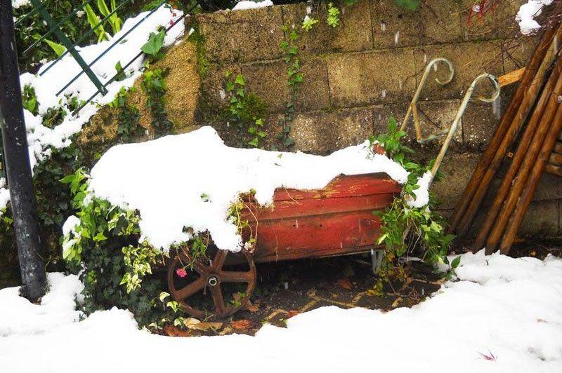 ficana con la neve